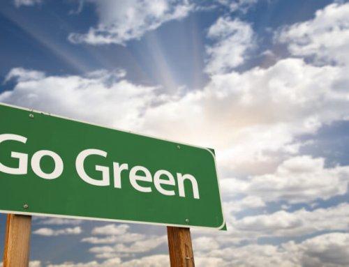 Witte plusgreen: Der schonende Umgang mit Ressourcen wird immer wichtiger.