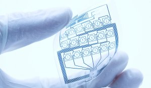 gedruckte elektronik flexibler schaltkreis 300x176 - Zulieferer (OEM)